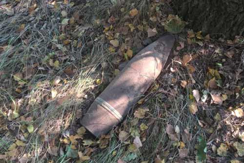 На Пирятинщині в лісовому масиві виявлено 17 артснарядів, 17 мінометних мін та 4 гранати