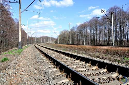 На Полтавщині приміський пасажирський потяг на смерть збив 48-річнного чоловіка