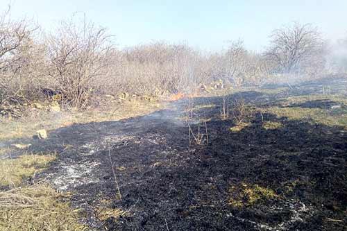 На Гребінківщині в с.Загребелля ліквідували пожежу на відкритій території