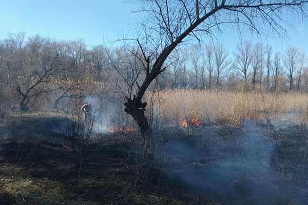 За минулу добу на Полтавщині вогнеборці загасили 6 пожеж на відкритій території