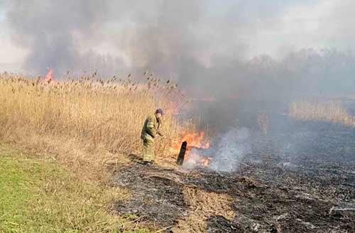 За минулу добу, на Полтавщині вогнеборці ліквідували 25 пожеж на відкритій території