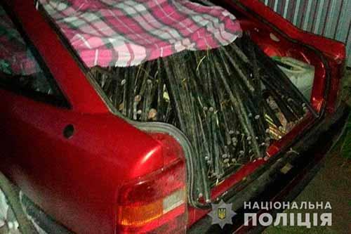 На Полтавщині затримали викрадачів телекомунікаційних кабелів